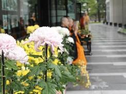11月花会式の様子